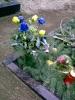 3.Advent 2007