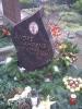 Andrès Garten